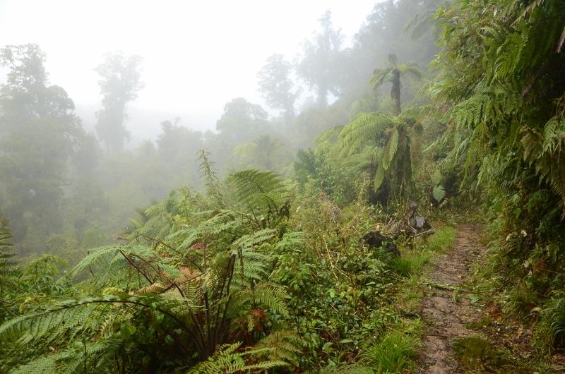 11. Mellan Lewis Hut och James Mackay Hut är det 700 höjdmeters stigning.