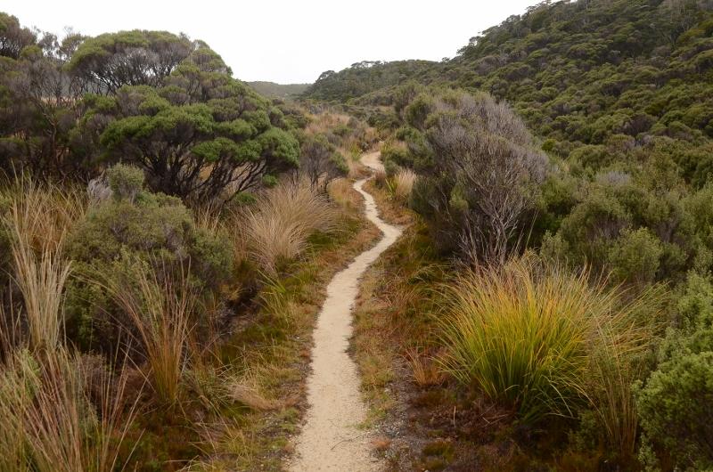 14. Lätt vandring mellan James Mackay Hut och Saxon Hut.