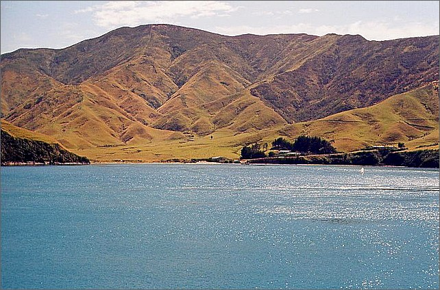 Queen Charlotte Sound, South Island, New Zealand.
