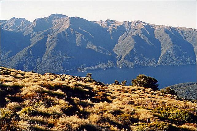 Kepler Track, New Zealand.