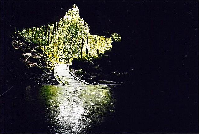Dear Cave, Gunung Mulu, Borneo, Malaysia.