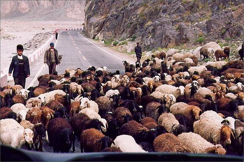 1. Vi åkte buss från Kashgar längs den klassiska vägen Karakoram Highway till vandringsstarten.