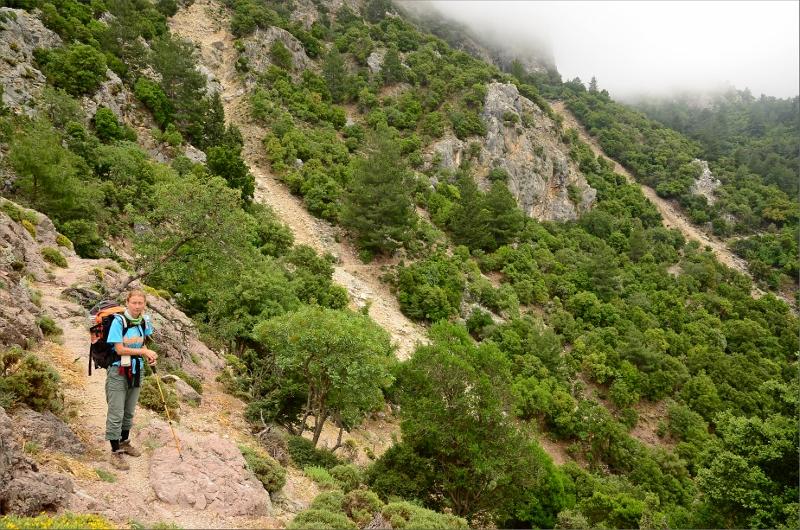 Torrt landskap och låg vegetation i slutet av stigningen.