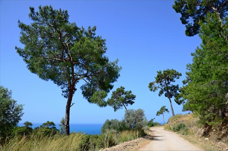 Början av grusvägen mellan Gavuragili och Patara.