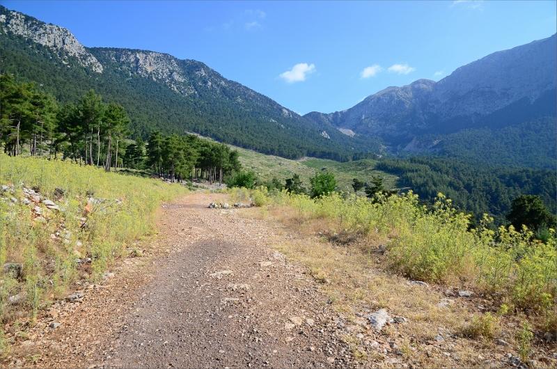 Liten grusväg strax ovanför Beysic på väg uppför Mount Olympos vars topp är utanför bilden till höger.