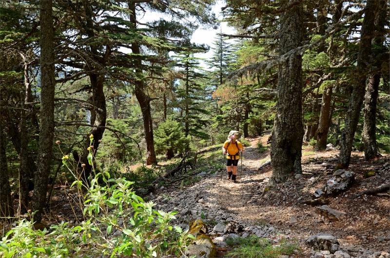 På väg uppför Mount Olympos.