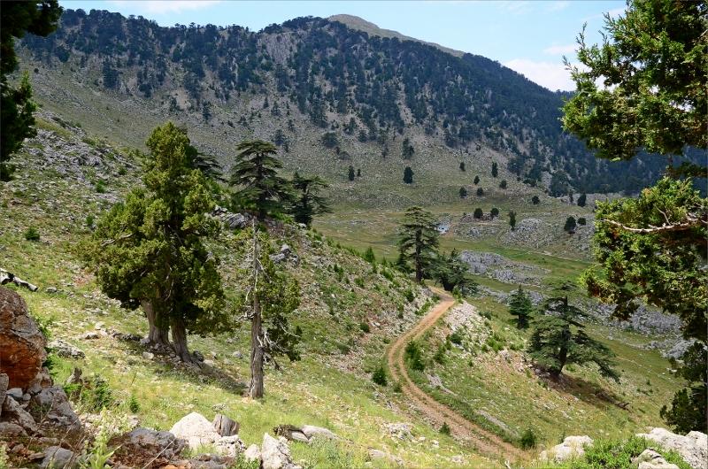 På väg nerför norra sidan av Mount Olympos.