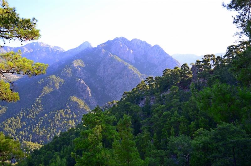 Vy från skogsvandringen tidigt på morgonen på väg ner i Göynuk Canyon.