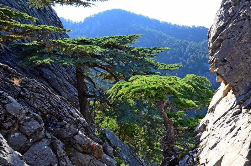 Det riktiga passet Hudacik Ridge 1400 meter.