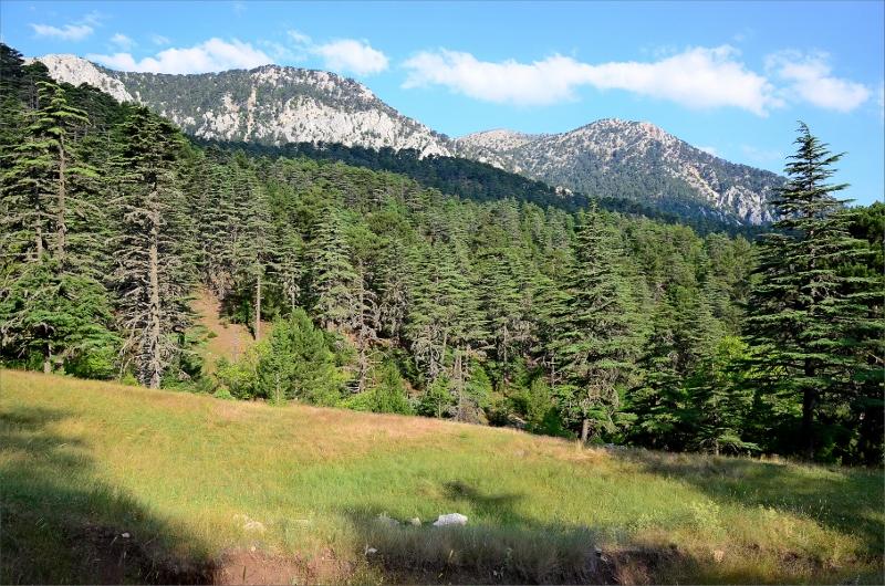 Vy en bit nedanför Karabel Pass mot nordväst/vänster sida av dalen.