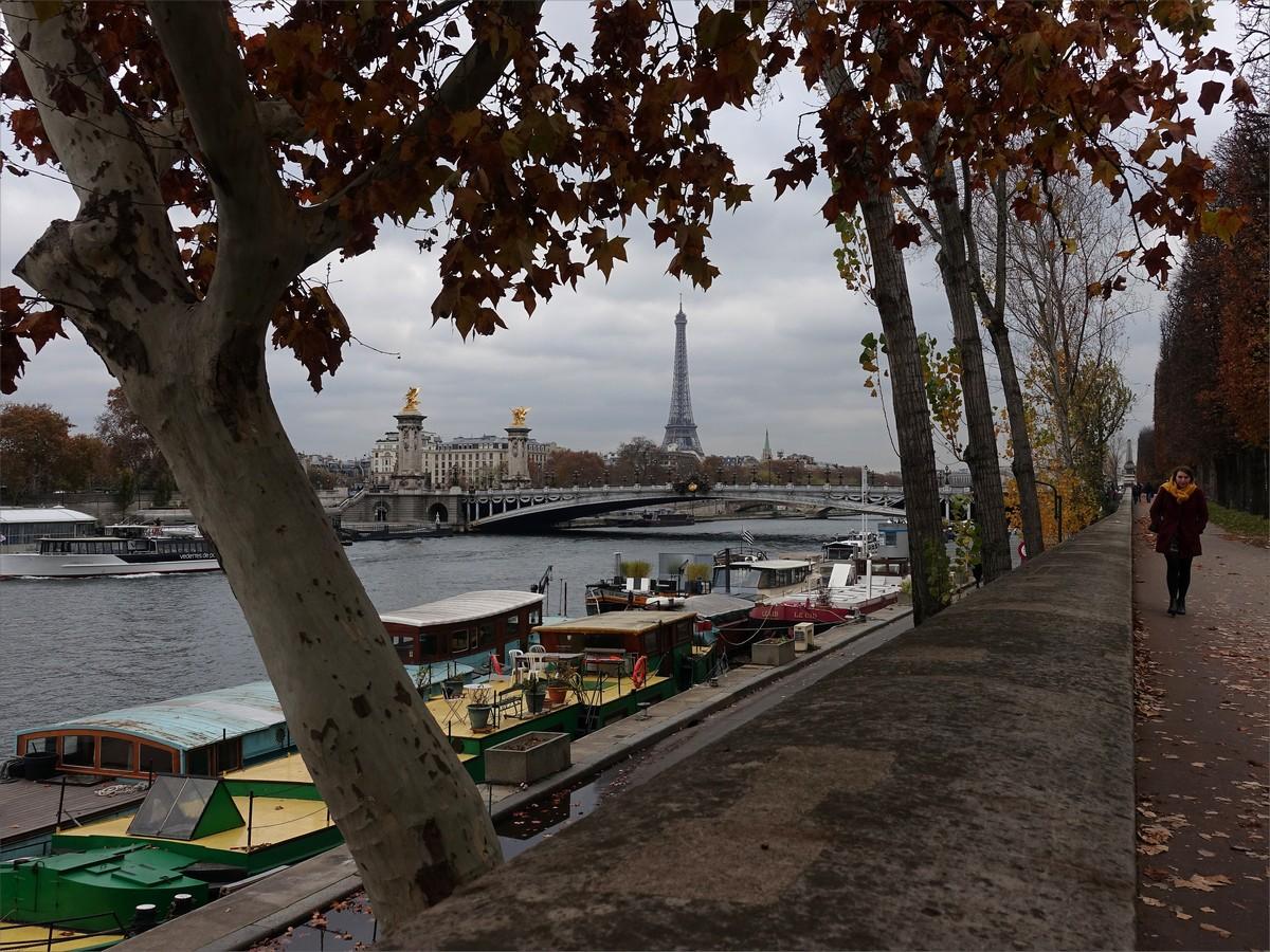 10. Seine och Eiffeltornet.